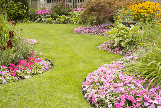 Ormond Beach Nurseries and Garden Centers - landscaping flowers