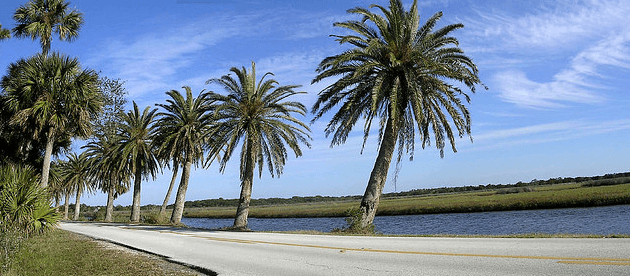 Local Landmark: The Ormond Scenic Loop - loop photo