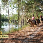 Visiting the Florida Agricultural Museum in Palm Coast