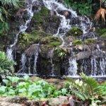 Seeking an Artistic Outlet? The Ormond Memorial Art Museum & Gardens Can Help