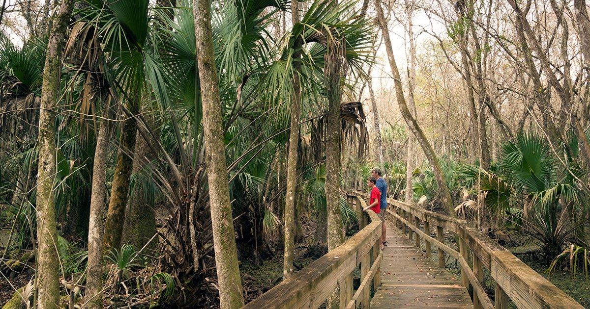 Explore Plantation Bay's Neighboring Florida State Parks