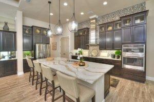 Gourmet Kitchen in Egret VII