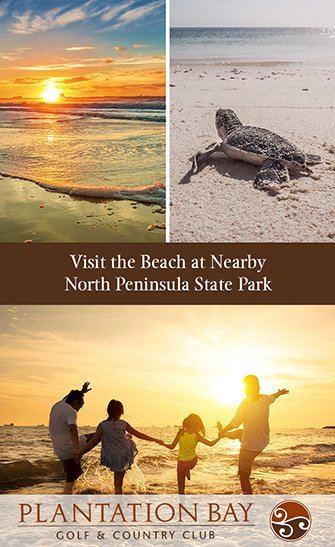 Visit the Beach at Nearby North Peninsula State Park